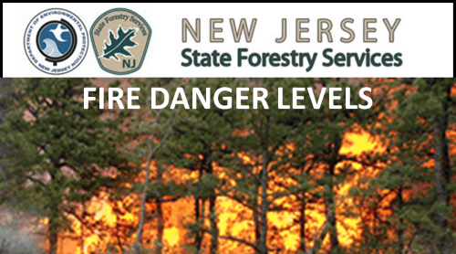 NJ Forestry Services